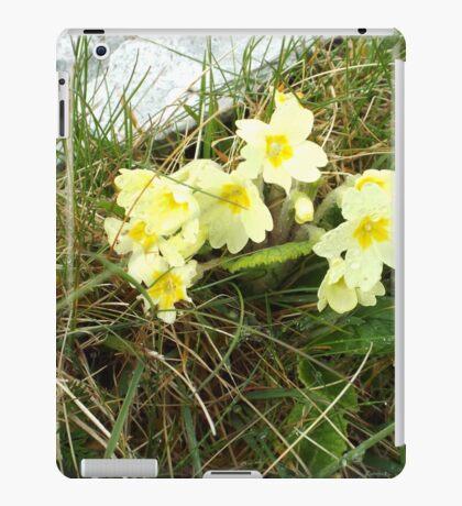 Wild Primrose iPad Case/Skin