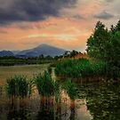 Sunset over Alserio's Lake by Roberto Pagani