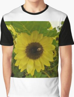 Sunflower honey bee – Losley gardens Graphic T-Shirt