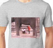 At the temple Unisex T-Shirt