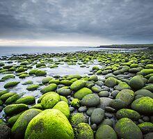 go green by JorunnSjofn Gudlaugsdottir