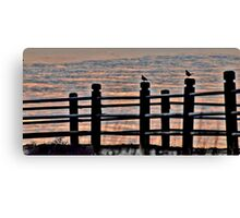 the fence posts Canvas Print