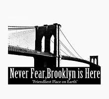 Brooklyn is Here  by Jessica Becker