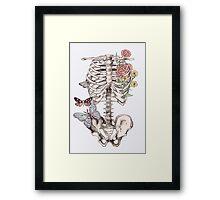 watercolour anatomy Framed Print