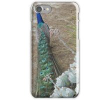 San Francisco Zoo iPhone Case/Skin