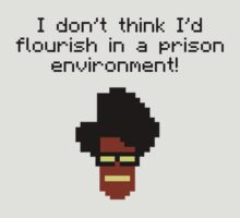 i don't think i'd flourish in a prison environment! by lauralaura