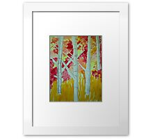 Birch in fall Framed Print