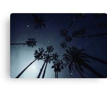 Palm Trees, Night Sky, Stars, Moon Canvas Print