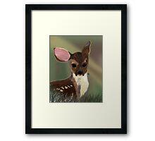 Bambi's Cousin Framed Print