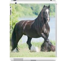 Gypsy horse, alternative name: Gypsy Cob iPad Case/Skin