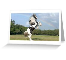 elite horse Greeting Card