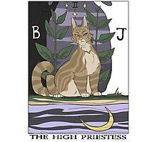 Warriors Tarot Series- The High Priestess Photographic Print