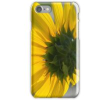 Sunflower and Katydid or Bush Cricket, I THINK! iPhone Case/Skin