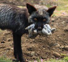 Fox and Rabbit Sticker