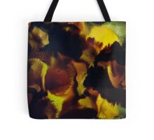 Walks with Dragons Tote Bag