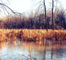 Autumn River Flowing through Wisconsin Sticker