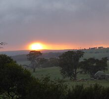 Solstice Sunrise! Taken this week, Mount Pleasant, Adelaide Hills. by Rita Blom