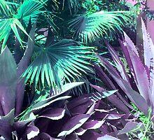 Cactus Garden Modern Fine Nature Art by Vicky Brago-Mitchell