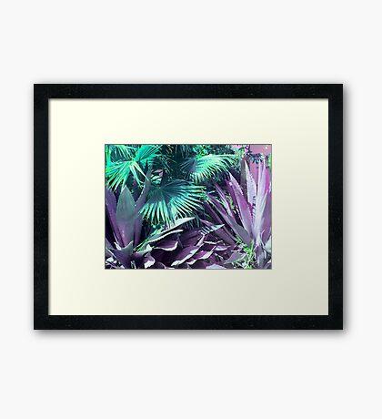 Cactus Garden Modern Fine Nature Art Framed Print
