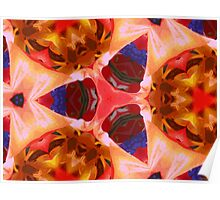 Kaleidoscope Geometry Pattern From Nature 11 Poster
