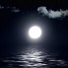 Moonrise No.1 by Erin Davis