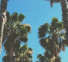 Grainy California Palm Trees Sticker