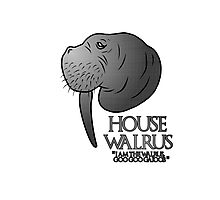 House Walrus (Silver Edition) Photographic Print