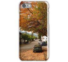 USA OREGON iPhone Case/Skin