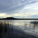 wintertime at cudgen lake...  by gail woodbury