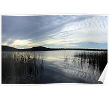 wintertime at cudgen lake...  Poster