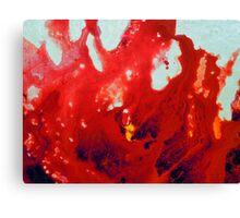 Fluid Acrylic Painting Red Abstract Floral Canvas Print