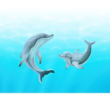 Dolphins Swimming in the Ocean Photographic Print