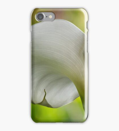 Elegant calla against nature's painted backdrop iPhone Case/Skin