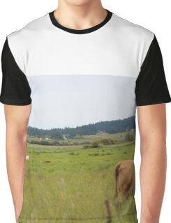 Cows in a field Graphic T-Shirt