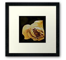 Spotted Rose Framed Print