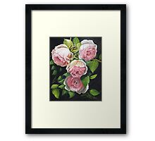 EDEN ROSE Framed Print