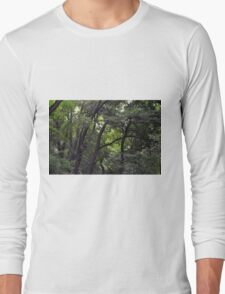 Forest background with many trees tops with green leaves. Long Sleeve T-Shirt