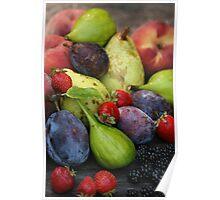 Harvest Organic Vegetables Poster