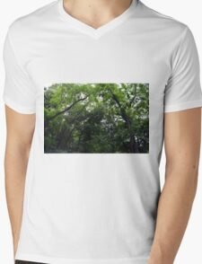 Forest background with many trees tops with green leaves. Mens V-Neck T-Shirt