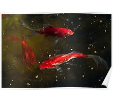 Three Goldfish Swimming in a Circle Poster