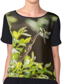 Dragonfly at Priest Brook Chiffon Top
