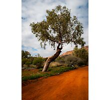 The red earth Photographic Print