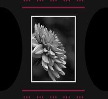 Dahlia Conture Style by Joy Watson