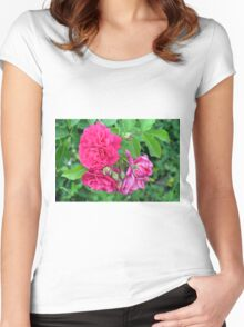 Pink roses and green leaves, natural background. Women's Fitted Scoop T-Shirt