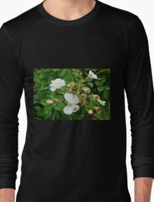 Small white delicate flowers and green leaves. Long Sleeve T-Shirt
