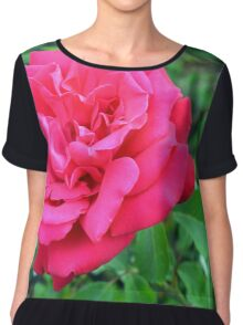 Pink rose and green leaves, natural background. Chiffon Top