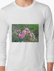 Pink roses in the garden, natural background. Long Sleeve T-Shirt