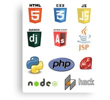 web developer programming lenguage set Metal Print