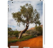The red earth iPad Case/Skin