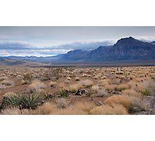 Blue Mountain Landscape in the Desert Southwest Photographic Print